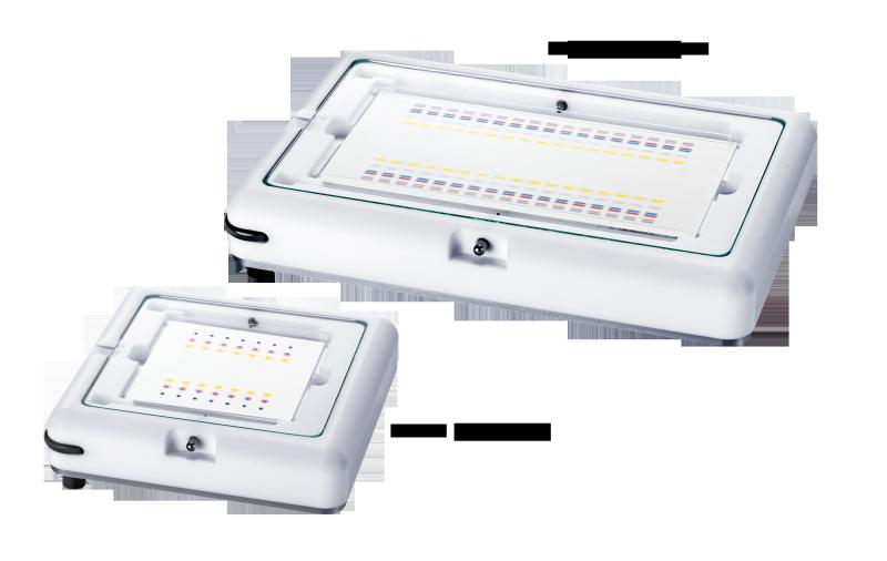 Horızontal Developing  Chambers for plates 10x10 cm -Yatay Yürütme Tankı  10x10 plakalar için